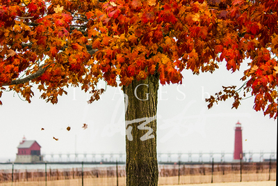 Fall Pier