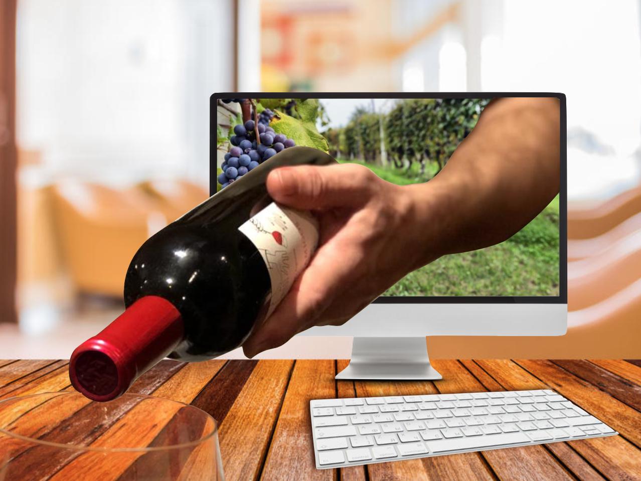 Cata de Vinos Virtual - Bodega ANAIA- Sábado 10-10 a las 19hs. (hasta 6 personas)