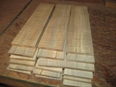 10 PIECES THIN SANDED CURLY MAPLE 12 X 3 X 3/8