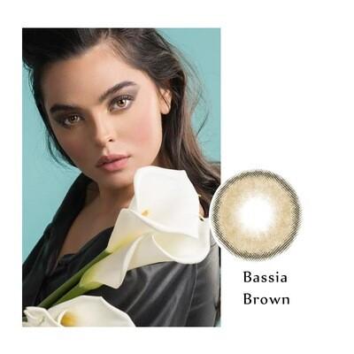 Bassia Brown