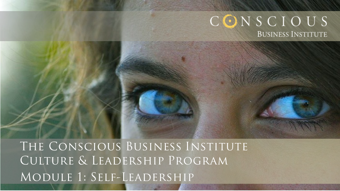 Conscious Business - Module 1-Chapter 1-6: Your Authentic Power
