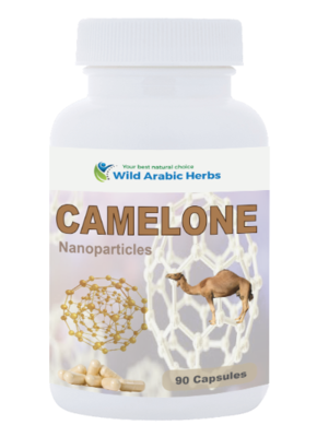 CAMELONE
