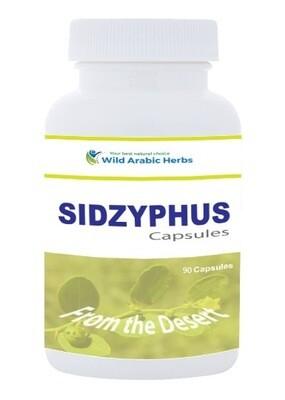 Sidzyphus - Ziziphus