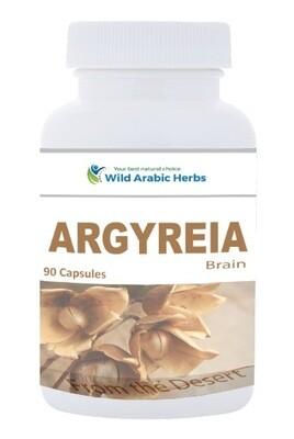 Argyreia - Brain