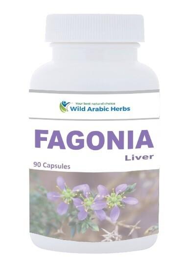Fagonia - Liver