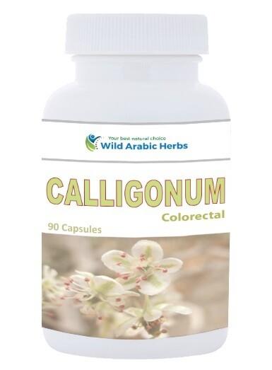 Calligonum – Colorectal