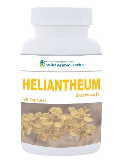 Heliantheum – Stomach