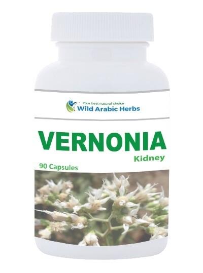 Vernonia – Kidney