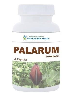 Palarum – Prostate & Testicular