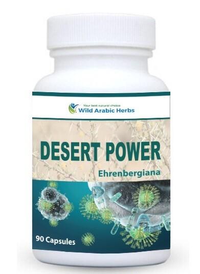 Desert Power Ehrenbergiana