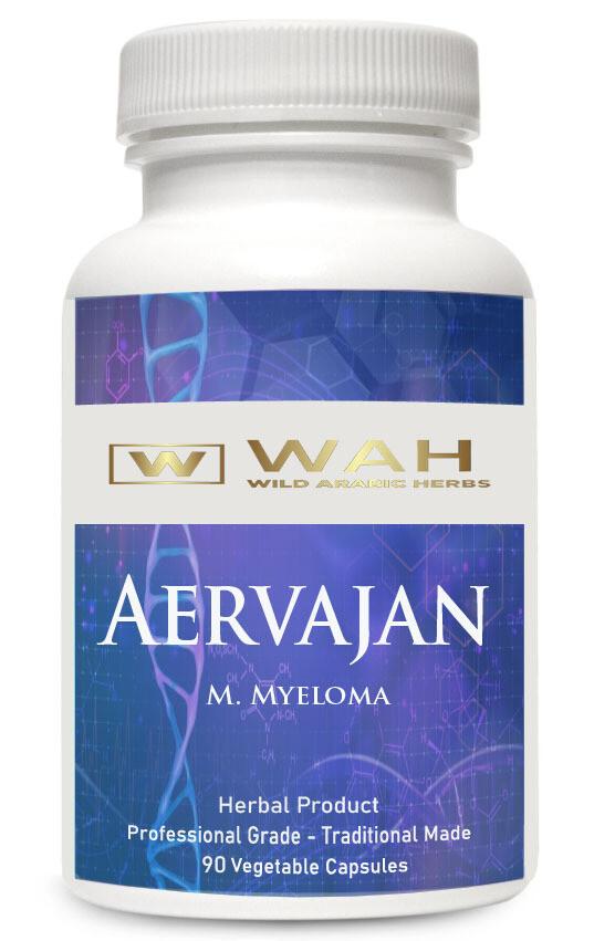 Aervajan - Multiple Myeloma