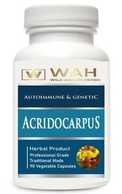 Acridocarpus