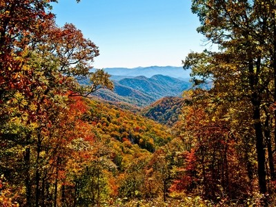 Smoky Mtns in Fall