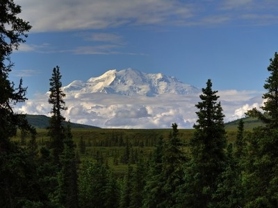 Beautiful Denali