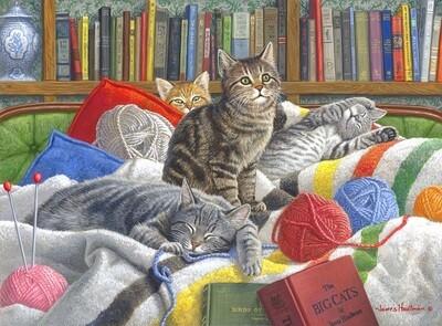 Kitten Dreams