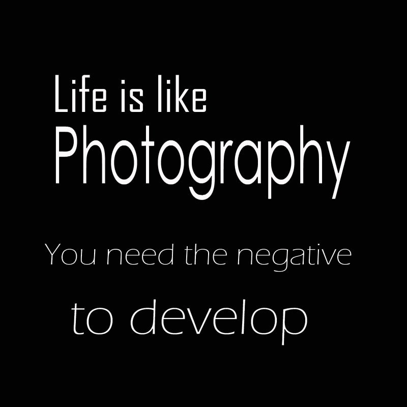 Life Like Photography