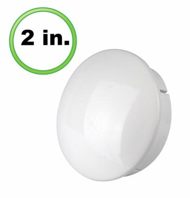 Internal Cap (2 inch)