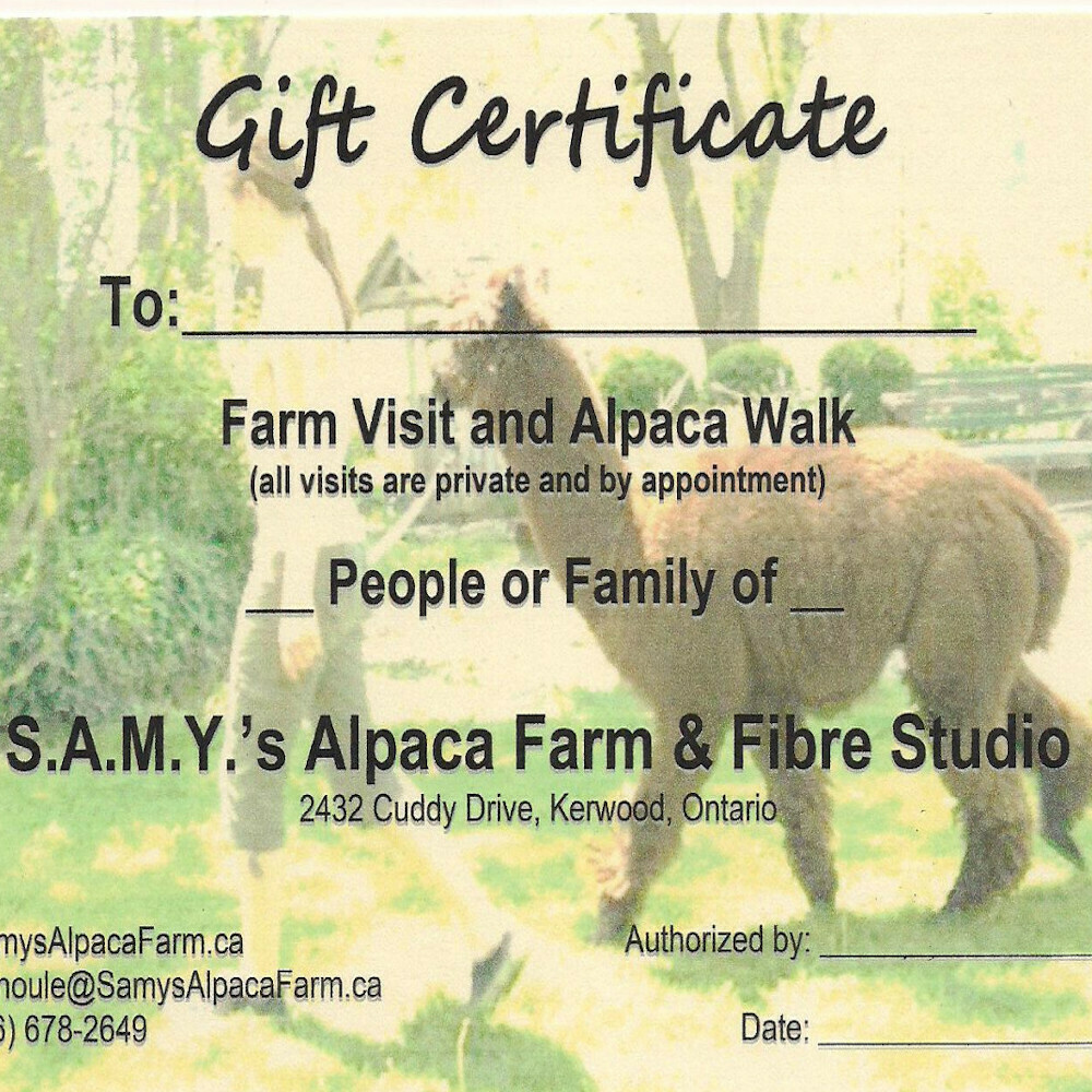 Gift Certificate for farm visit / alpaca walk
