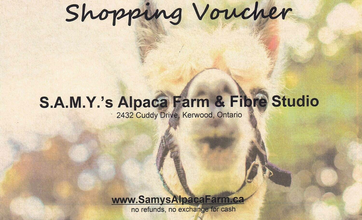 Shopping Voucher (Digital)