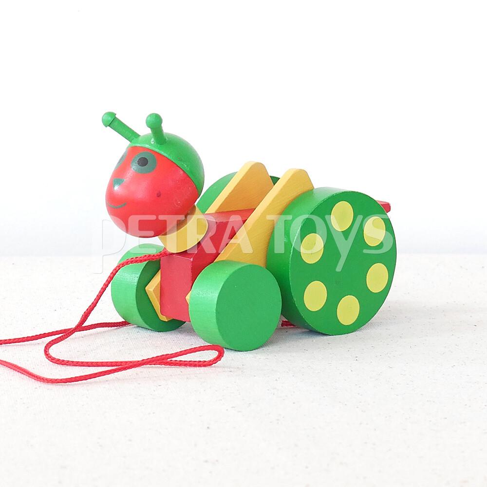 Little Grasshopper Pull-Along Toy
