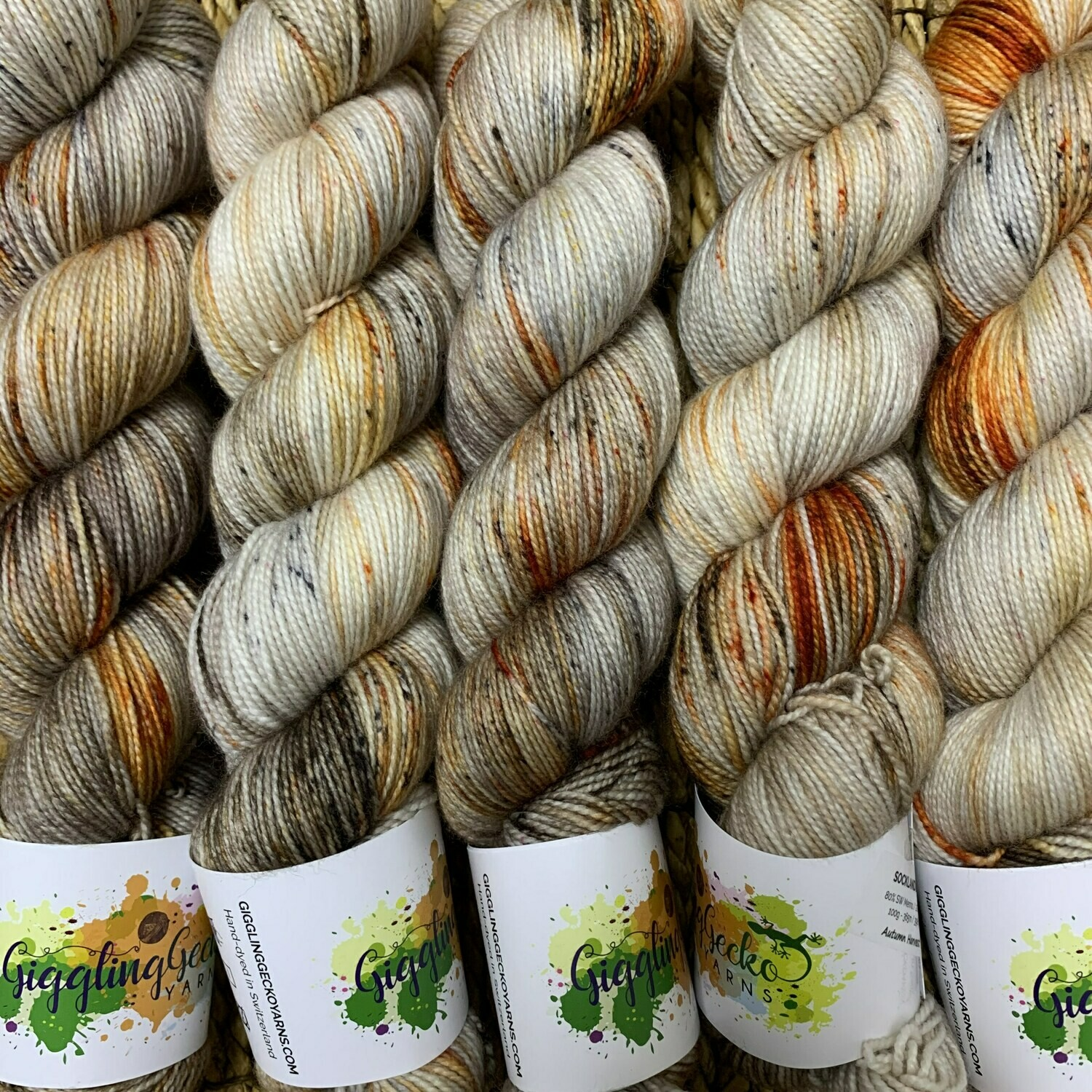 GGY GigglingGecko Socklandia Soxs Yarn Autumn Harvest