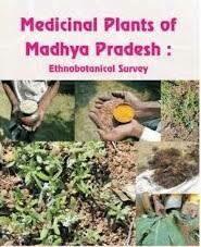 MEDICINAL PLANTS OF MADHYA PRADESH : AN ENTHROBOTANICAL By DR. PARVEEN GARG