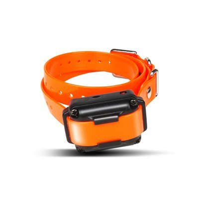 Dogtra iQ Plus+ Additional Receiver/Collar