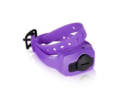 Dogtra iQ CLiQ Additional Receiver/Collar (Purple)