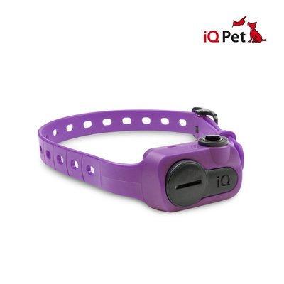 Dogtra iQ No Bark (Purple)