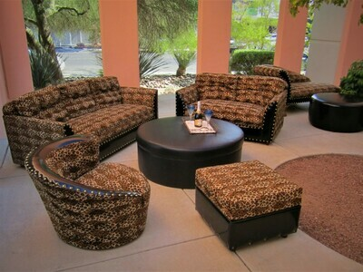 Wild One Rental Package-Seating for 14
