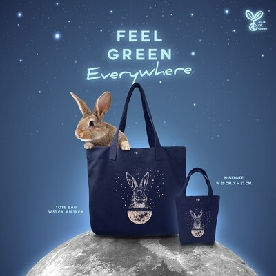 MTDB-Moon Rabbit