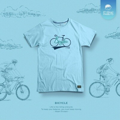 KT-Bicycle 19 I 3 Colours