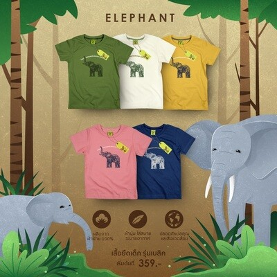 K-Elephant YM | 5 Colours