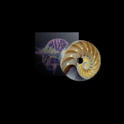 Fibonacci Sequence: The Golden Ratio