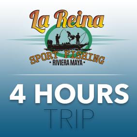 4 HOUR TRIP