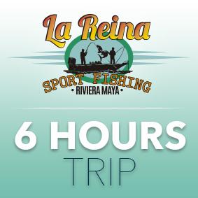 6 HOUR TRIP