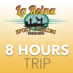 8 HOUR TRIP