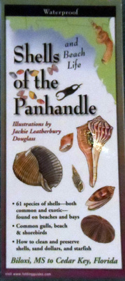 Field Guide to Shells and Beach Life of the Florida Panhandle