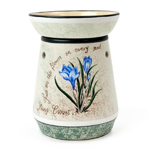 Tall Crocus Warmer