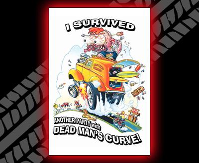 I Survived DMC Poster color