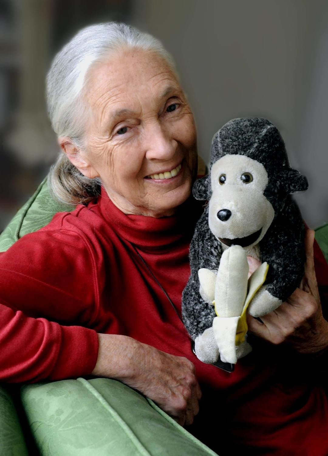 Mr H - Jane's soft toy travelling companion