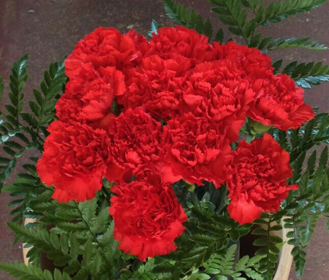 Red Bouquet (single colour)