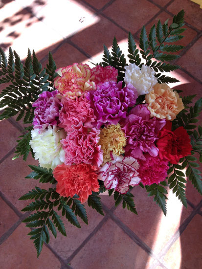 15 Mixed Carnations