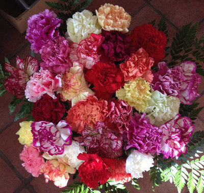 30 Mixed Carnations