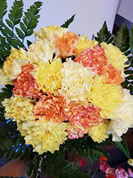 Spring Cheer Bouquet - NEW!!