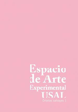 Espacio de Arte Experimental de la Universidad de Salamanca