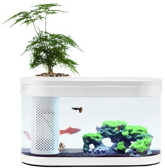 Аквариум Xiaomi Eco Fish Tank с функцией выращивания растений С100 (White)