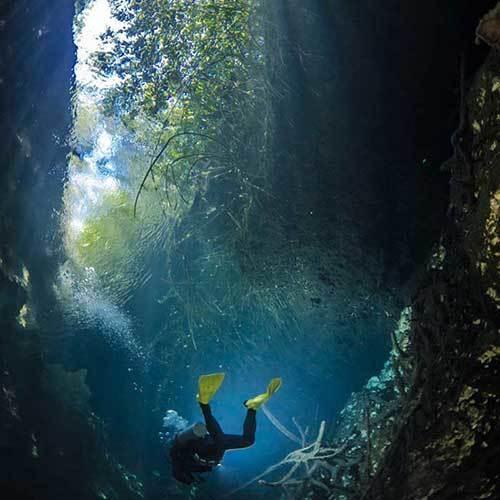 CASA CENOTE (Cenote Manatee)