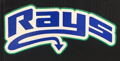 Rays Decal
