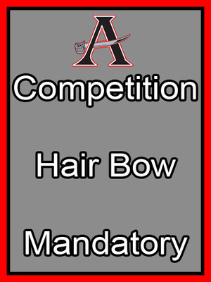 Competition Hair Bow Mandatory
